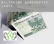 Wiltshire  bankruptcy lawyer