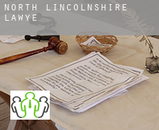North Lincolnshire  lawyer