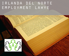 Northern Ireland  employment lawyer