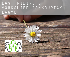 East Riding of Yorkshire  bankruptcy lawyer