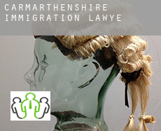Of Carmarthenshire  immigration lawyer